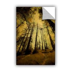 ArtWall Meander 7 Removable Wall Mural Size: