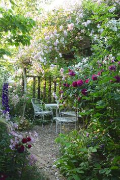 Small Cottage Garden Ideas, Cottage Garden Design, Flower Garden Design, Diy Garden, Summer Garden, Dream Garden, Balcony Garden, Garden Web, Shade Garden