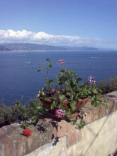 Vista dall'Abbazia della Cervara, Santa Margherita Ligure, Liguria - © Tiziana Suman on facebook.com/turismoinliguria