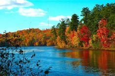 Fall Harvest Wallpaper Photo