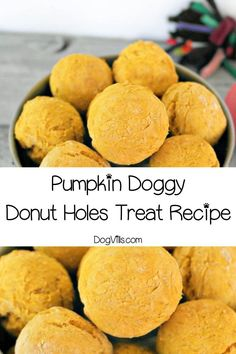 Skip the sugar-laden drive through freebie and whip up a batch of these pumpkin doggy donut holes hypoallergenic dog treats for your pooch! Dog Safe Cake Recipe, Dog Cake Recipes, Easy Dog Treat Recipes, Dog Biscuit Recipes, Dog Food Recipes, Puppy Treats, Diy Dog Treats, Homemade Dog Treats, Healthy Dog Treats