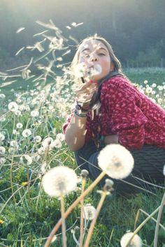 dandelions and summer fun