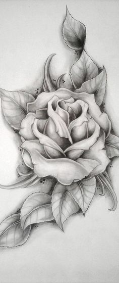 Pencil drawings, chicano art tattoos, chicano drawings, body art tattoos, r Tattoo P, Rose Drawing Tattoo, Tattoo Design Drawings, Pencil Art Drawings, Art Drawings Sketches, Rose Drawings, Blade Tattoo, Anklet Tattoos, Arm Tattoos