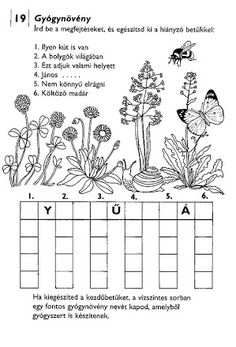 Albumarchívum - Agyafúrt betűrejtvények Kids Learning, Worksheets, Mandala, Diagram, Album, Writing, Reading, Pictures, Reading Books