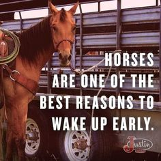 Horses are one of the best reasons to wake up early! Style My Ride hey I may not like waking up in the mornings but when I get up and see my horses it makes me not grumpy anymore Rodeo Quotes, Cowboy Quotes, Cowgirl Quote, Equestrian Quotes, Equestrian Problems, Hunting Quotes, Son Quotes, Baby Quotes, Family Quotes