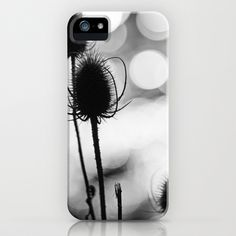 Teasel Silhouette iPhone Case by David P Hunter - $35.00