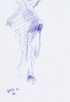 Sketch 251  Original Horse Blue Ballpoint Pen by benedictegele