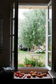garden, seen from inside