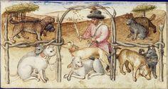 La chasse au cerf  Gaston Phébus, Livre de la chasse Milieu angevin, vers 1445-1450 Paris, BNF, département des Manuscrits, Français 1291, fol. 48