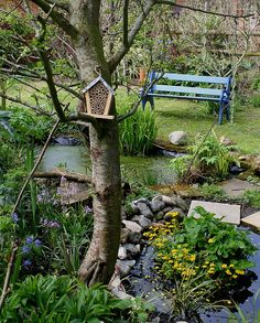 Pond, bench, bee house