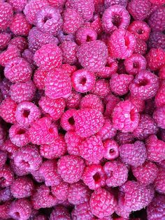 Wash them with vinegar - prepare a mixture of one part vinegar (white or apple cider probably work best) and ten parts water. Dump the berries into the mixture and swirl around. Drain, rinse if you want (though the mixture is so diluted you can't taste the vinegar,) and pop in the fridge. The vinegar kills any mold spores and other bacteria that might be on the surface of the fruit! Raspberries will last a week or more, and strawberries go almost two weeks without getting moldy or soft.