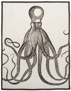 """""""Octopus Tea Towel"""" by Thomas Paul  / $22 / on burkedecor.com / This adorable tea towel is 100% cotton with a hand screened print & piped edges / Measures 20"""" X 28""""."""