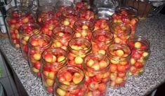 Preserving Food, Graham Crackers, Kimchi, Preserves, Pickles, Natural, Diy And Crafts, Detox, Frozen