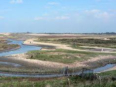 Panoramio - Photo of Wandelen in het Zwin