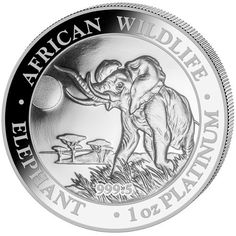 Silver Somalia Elephant Art-Round//Coin 1//4 oz .9999 Pure//Solid Silver New