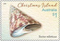 Christmas Island Shells stamp issue now in-store or online http://auspo.st/2bBixAv #Philately