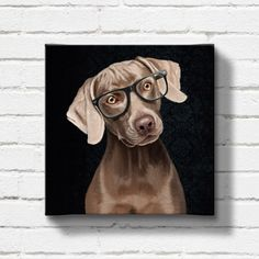 Portrait of an elegantweimaraner with glasses on a by SparaFuori, $100.00