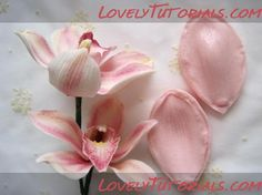 Орхидея,orchid,orchidej,Orchidee,orchidea,o rquídea - Мастер-классы по украшению тортов Cake Decorating Tutorials (How To's) Tortas Paso a Paso
