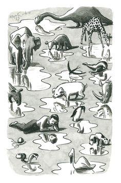 Animalarium: Franco Matticchio