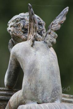 la ragnatela che attende. by ♥GIÖ♥, via Flickr