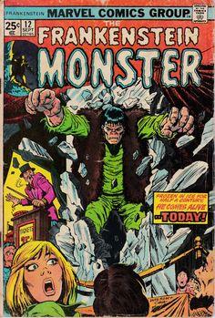 Monster of Frankenstein 12  September 1974 Issue  by ViewObscura