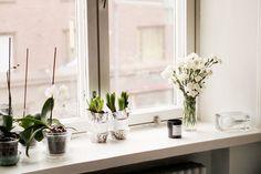 Fresh flowers on the windowsill.