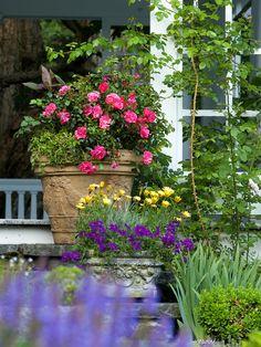 colors + textures + planters