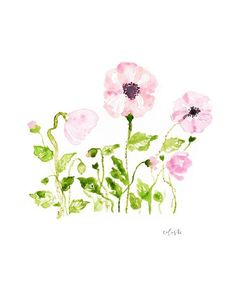 Wild Poppies watercolor poster print