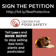 PLEASE SIGN and SHARE EVERYWHERE!!! This is SO IMPORTANT!!! We only have a short time to try to undo the damage we have done to our bee populations!!! We CANNOT live without our bees!!! Thank You!!!