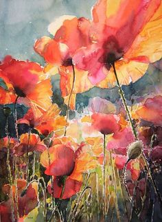 Poppies Watercolor Painting Uncredited (I don't usually like paintings of poppies, but this one with the unique angle and lighting is actually well done and shows how fragile and fleeting the flower is so I'd like to credit the artist if anyone knows who created it).