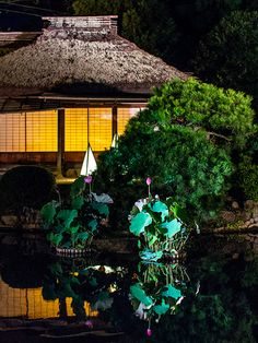Korakuen #japan #okayama