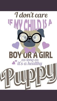 I don't care if my child is a boy or a girl as long as it's a healthy PUPPY!
