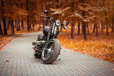 Harley-Davidson Fatboy custom model