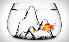 fish bowl designed by Aruliden for Turkish design brand Gaia and Gino. The Fishscape is a gallon handmade glass fish bowl with a textured interior landscape that gives its little dwellers a fun setting to swim around.