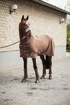 Horze Base Fleece Sheet - This lightweight multi-purpose fleece rug will keep your horse warm, dry and comfortable while looking great.