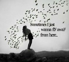 Sometimes I just want to fly away from here