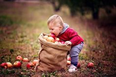 Most Popular fall baby pictures kids ideas Apples Photography, Outdoor Family Photography, Photography Mini Sessions, Autumn Photography, Children Photography, Apple Orchard Photography, Fall Baby Pictures, Fall Family Photos, Fall Photos