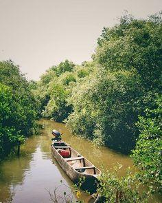 Crocodile Boat Safari with Bird-watching trip in Goa —Articles For Website County Cork Ireland, Dublin Ireland, Ireland Vacation, Ireland Travel, Go Spot, Ireland Landscape, Boat Tours, Outdoor Art, Paris Travel