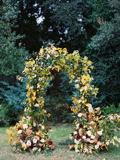 Earthy floral arch for fall Wedding ceremony at Clark Gardens in Texas Fall Wedding Flowers, Wedding Flower Inspiration, Autumn Wedding, Wedding Ideas, Clark Gardens, Destination Wedding Decor, Wedding Arbors, Wedding Venues, Yosemite Wedding