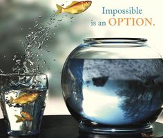 Impossible is an option. #business #motivation  www.Your24hCoach.com
