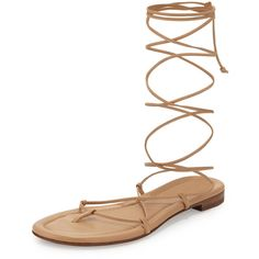 Michael Kors Bradshaw Lace-Up Gladiator Sandal ($295) ❤ liked on Polyvore featuring shoes, sandals, toffee, ankle strap flats, michael kors flats, lace-up sandals, roman sandals and lace up flats