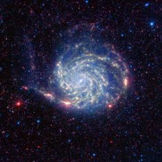 The Pinwheel Galaxy is one of the largest Galaxies yet discovered. At 170,000 light years in diameter it is nearly double the size of the Milky Way. The Pinwheel galaxy has a structure similar to that of the Milky Way being a spiral galaxy. It is believed to have a mass that is the equivalent of over 100 billion solar systems in its main disk and and 3 billion solar systems in its smaller bulge. The estimates on its distance from the Milky Way is between 20 million to 26 million light years.