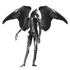 Angel by Dan Hillier