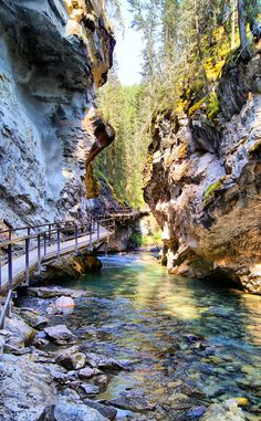 Steep Valley  | Travel | Vacation Ideas | Road Trip | Places to Visit | Banff National Park | AB | Natural Feature | Scenic Point | Hiking Area