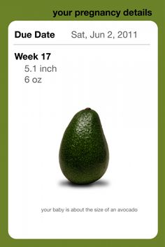 Pregnancy App About the Size of an avocado week 17 #pregnant