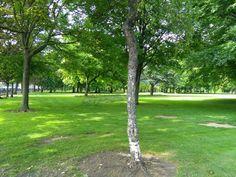 Park#Ireland