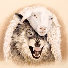 Jesus' Sermon on the Mount Who Is The Antichrist, Sheep Tattoo, Bible Quiz, Wolf Tattoo Sleeve, Big Bad Wolf, Bible Teachings, Bible Stories, Jehovah, Kingdom Of Heaven