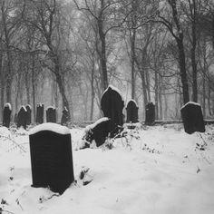 The Everyday Goth : Photo Eddard Stark, Six Feet Under, Bishounen, Snow Queen, Ice Queen, Melancholy, Macabre, Dark Side, Scary