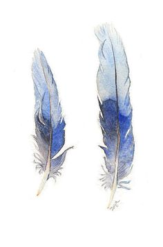 Blue Feathers watercolor inspiration