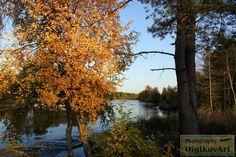 Horunkoski Pyhäjoki syksy